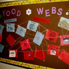 Food web - I like how the produces and consumers are color coded within the web!