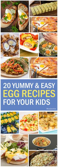 Do you want to try different egg variety for your kid? Here is the list of some simple and easy egg recipes for kids they love to eat all varieties.Try out!