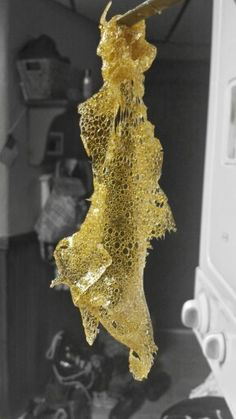 BHO DABS CANNIBUS CONCENTRATE HONEY WAX SHATTER