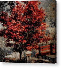 Fine Art America Watermark WILL NOT be visible on purchased  product ..  Please visit and see all available art /photography ! Thanks for the support !! Copyright 2016 Sandra Gallegos All rights reserved   Sandra-gallegos.pixels.com
