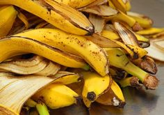 Banana Peels are more useful than we think. I will share with you juicy gossips on banana peel benefits. The endpoint for banana peel doesn't always have to be the trash;