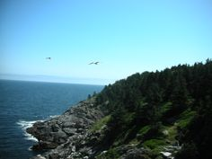 Monhegan Island, Maine...must make at least one trip this far north in the US