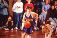 A look at the top 10 grossing basketball movies at the domestic box office. Basketball Movies, Air Bud, Kevin Zegers, Pet Dogs, Pets, 101 Dalmatians, Box Office, Attractive Men, Stock Photos