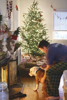 xmas bulldog...and when santa comes down this chimney...we don't attack him cause he brings you lots of toys!!!