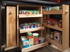 Storage Solutions - kitchen cabinets - other metro - Wellborn Cabinet, Inc.