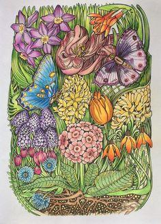 512 Best Fleurs Images On Pinterest