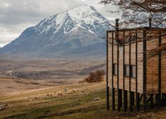 A cluster of timber cabins by Chilean architect Felipe Assadi clings to a Patagonian hillside, forming individual lodgings for the guests of the Awasi Hotel