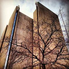 Frank A. Sedita City Court (A Brutalist Gem!) — Buffalo Urbex Tours #buffalo #niagarafalls #brutalism #niagara #niagarafallsny #america #americans #usa #americana #retro #kitsch #kitschy #nostalgia #nostalgic #nostolgie #travel #igerstravel #igers #travelgram #traveling#travelingram #travels #travelphotography #vignettetours #urbex #vintage #koryotours #urbexbuffalo#archetecture  Urbex Tourism with 【www.facebook.com/vignettetours】