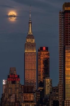 Night Aesthetic, City Aesthetic, Travel Aesthetic, New York Life, Nyc Life, Images Esthétiques, City Vibe, City Wallpaper, City That Never Sleeps