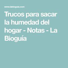 Trucos para sacar la humedad del hogar - Notas - La Bioguía