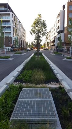 #Stormwater filtration #greening #sydney #glebe #raingarden