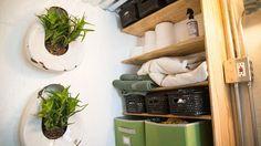 Hanging Plants - Terraform One by Terraform Tiny Homes