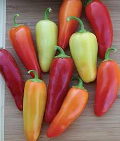 The Santa Fe Grande does well in Northern Europe with its short growing season. This plant produces cone-shaped peppers, about 8 cm long. Santa Fe Grande has a thick fruit wall. The harvest is high and heavy. Because of that, the plant tends to hang. List Of Peppers, Types Of Peppers, Santa Fe, Still Tasty, Pepper Plants, Pepper Seeds, Plantar, Stuffed Hot Peppers, 1 Oz
