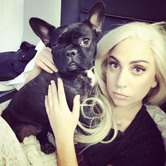 Instant Follow Friday: The Glamorous Life of Lady Gaga Including Taylor Kinney, Her Dog Asia, ARTPOP and Yoga