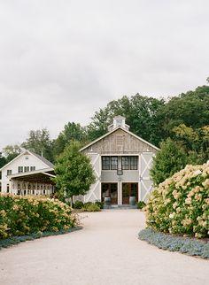 7 Pippin Hill Farms Wedding