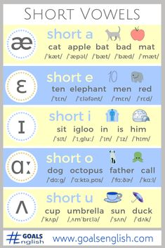 Short Vowels of American English Chart Infographic Phonetics English, English Phonics, English Vocabulary Words, Learn English Words, English Lessons, Teaching English, Phonetics For Kids, Ipa Phonetics, French Lessons