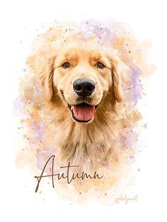 Gift for for Golden Retriever Lovers. Watercolor Cat, Watercolor Portraits, Golden Retriever Kunst, Lion King Art, Dog Paintings, Animal Drawings, Puppy Drawings, Retriever Puppy, Dog Portraits