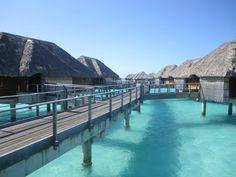 Four Seasons Bora Bora.. my dream honeymoon
