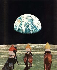 """Race for the prize"" Art Print by Jesse Treece"