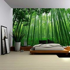 Wall26® - Close Up View into a Pure Green Bamboo Forest - Wall Mural, Removable Sticker, Home Decor - 100x144 inches