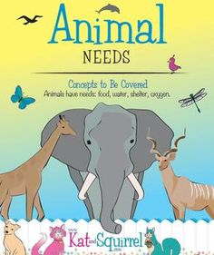 Animal Needs  - wow! 3 awesome interactive lessons and bonus material!