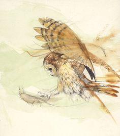 Owl water painting by Walty Dudok van Heel Wildlife Paintings, Nature Paintings, Wildlife Art, Animal Paintings, Owl Art, Bird Art, Owl Quilts, Owl Eyes, Art Deco Posters