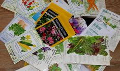 Plant these seeds now in our Zone 9A Gulf Coast gardens!