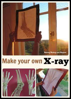 Children's Easy Cardboard X-ray Tablet - Mummy Musings and Mayhem