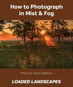 How to Photograph in Mist & Fog #photography #nature #landscape