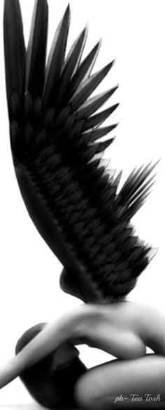 Get free image hosting, easy photo sharing, and photo editing. Upload pictures and videos, create with the online photo editor, or browse a photo gallery or album and create custom print products. Ange Demon, Angel And Devil, Angels And Demons, Dark Angels, Fallen Angels, Guardian Angels, Tatoo Art, Angel Art, Angel Wings