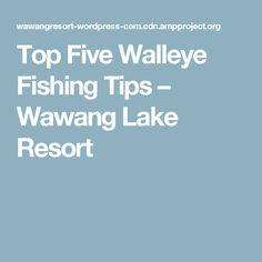 Top Five Walleye Fishing Tips – Wawang Lake Resort Walleye Fishing Tips, Bass Fishing Tips, Fishing Guide, Sport Fishing, Fishing Lures, Fly Fishing, Fishing Stuff, In A Funk, Top Five