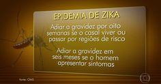 OMS pede que brasileiras adiem gravidez devido ao surto de zika