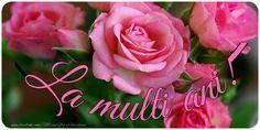 Felicitari de la multi ani - La multi ani Best Dance, Happy B Day, Adele, Celebrations, Diy And Crafts, Rose, Flowers, Plants, Happy Birthday