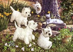"West Highland White Terrier note cards are 5 1/2"" x 4 1/4"" and come in packages of 10 cards. One design per package. All designs include envelopes. Blank inside. Great stocking stuffers!"
