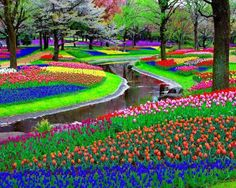 Park Keukenhof, also known as the Garden of Europe, is the world's largest flower garden situated near Lisse, Netherlands. Approximately 7,000,000 flower bulbs are planted annually in the park, which covers an area of 32 hectares.