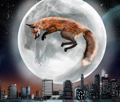 Soaring Fox by SolomonKarmel-Shann