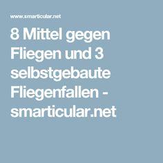 8 Mittel gegen Fliegen und 3 selbstgebaute Fliegenfallen - smarticular.net