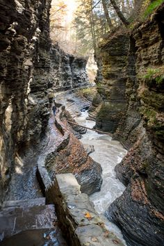 Watkins Glen Trip-ignoring the not so subtle advertising, this offers a wonderful itinerary for the Seeing some of NYS waterfalls