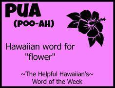 Helpful hawaiian word of the week ~ pua Hawaii Life, Aloha Hawaii, Hawaii Vacation, Hawaii Travel, Hawaiian Words And Meanings, Hawaiian Phrases, Hawaiian Sayings, Hawaii Quotes, Aloha Quotes