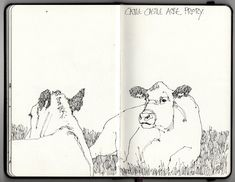 Ian Sidaway Fine Line Cow Painting, Watercolor Paintings, Grant Wood, Highland Cattle, Fall Fruits, Sketchbook Pages, Ink Pen Drawings, Ink Art, Norfolk