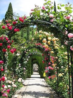 BeyazBegonvil I Kendin Yap I Alışveriş IHobi I Dekorasyon I Kozmetik I Moda blogu: Dekorasyon I Bahçe Dekorasyonu Nasıl Olmalı ?