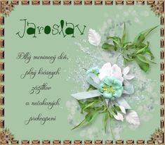 Tableware, Floral, Flowers, Dinnerware, Dishes, Royal Icing Flowers, Flower, Flower, Florals