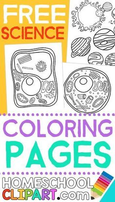 Free Science Coloring Pages, Notebooking Pages, Charts, Worksheets and more!  http://HomeschoolClipart.com