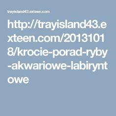 http://trayisland43.exteen.com/20131018/krocie-porad-ryby-akwariowe-labiryntowe