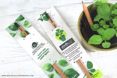 This unique giveaway pairs seed paper with a Plantable Plantable Sprout Pencil in one full-color branded unit! Basil Plant, Seed Paper, Green Business, Pencil And Paper, Sprouts, How To Memorize Things, Salad, Salads, Lettuce