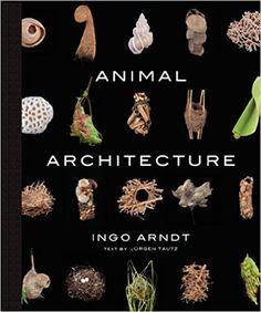 Amazon.com: Animal Architecture (9781419711657): Ingo Arndt, Jurgen Tautz, Jim Brandenburg: Books