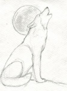 wolf howling drawings in pencil Wolf Drawing Easy, Husky Drawing, Drawing Guide, Drawing Ideas, Wolf Howling Drawing, Wolf Sketch Easy, Moon Drawing, Step By Step Drawing, Drawing Tutorials