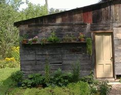 Taken from the dooryard, showing the wood shed and a little kitchen garden just outside the back door.