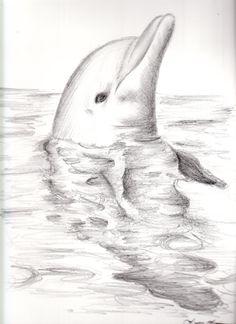 Dolphin by FantasyDreams46