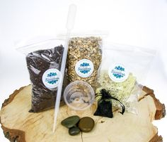 Our terrarium starter kit contains everything you need to fill a terrarium. Succulent compost, gravel, moss, activated charcoal and decorative pebbles Large Terrarium, Terrarium Kits, Decorative Pebbles, Selection Boxes, Small Succulents, Natural Honey, Honey Colour, Starter Kit, Compost